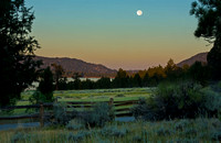 Moon over Meadow