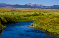 Owens River & Mammoth Mountain